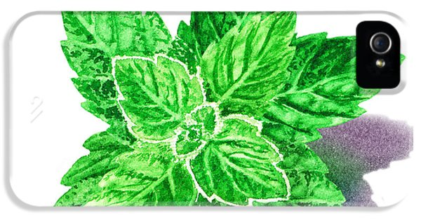 IPhone 5s Case featuring the painting Mint Leaves by Irina Sztukowski