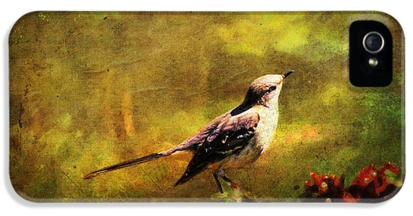 Mockingbird Have You Heard... IPhone 5s Case