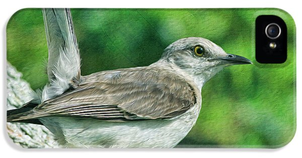 Mockingbird iPhone 5s Case - Mockingbird Pose by Deborah Benoit