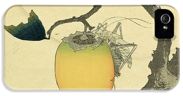 Grasshopper iPhone 5s Case - Moon Persimmon And Grasshopper by Katsushika Hokusai