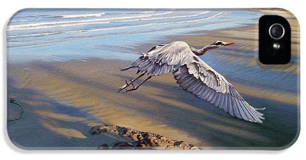 Heron iPhone 5s Case - Morning Fight-blue Heron by Paul Krapf