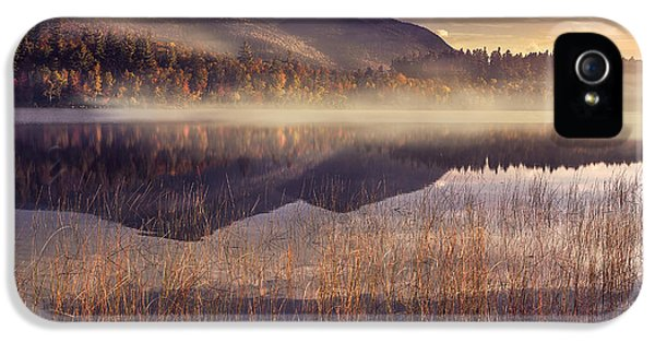Morning In Adirondacks IPhone 5s Case by Magda  Bognar