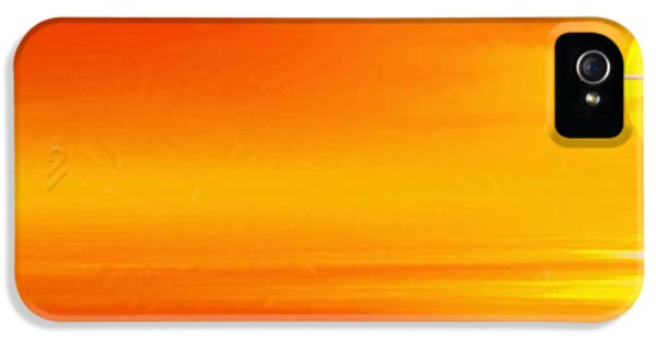 Mute Sunset IPhone 5s Case by John Edwards
