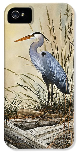 Natures Grace IPhone 5s Case