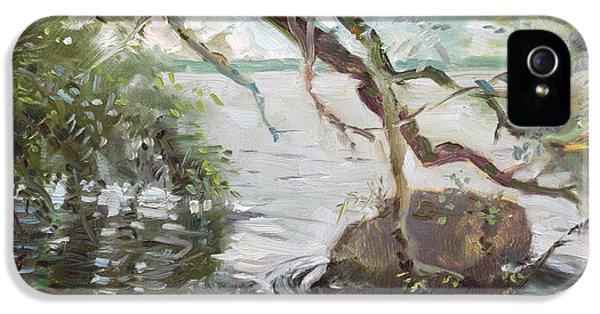 Seagull iPhone 5s Case - Niagara River Side by Ylli Haruni
