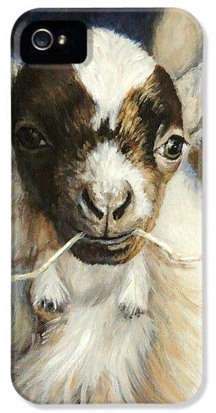 Nigerian Dwarf Goat With Straw IPhone 5s Case