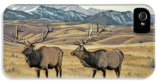 Bull iPhone 5s Case - North Of Yellowstone by Paul Krapf