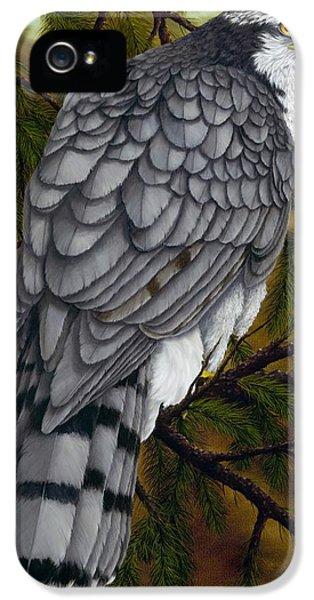 Northern Goshawk IPhone 5s Case by Rick Bainbridge