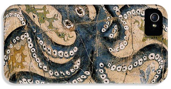 Octopus - Study No. 2 IPhone 5s Case