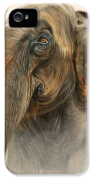 Elephant iPhone 5s Case - Old Lady Of Nepal 2 by Aaron Blaise