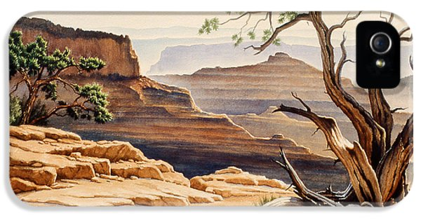 Old Tree At The Canyon IPhone 5s Case by Paul Krapf