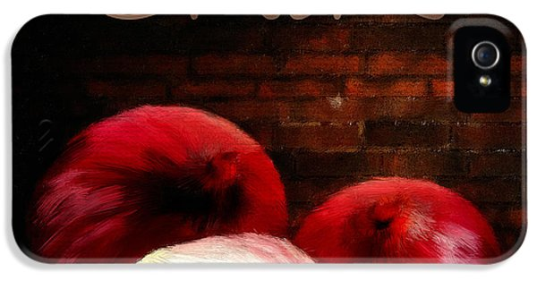 Onions II IPhone 5s Case by Lourry Legarde