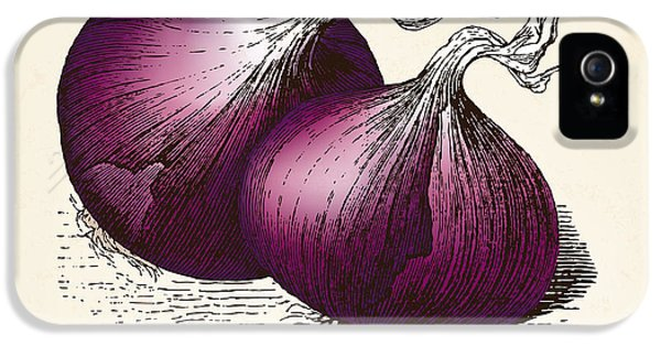 Etching iPhone 5s Case - Onions Vintage Illustration, Red Onions by Oliver Hoffmann