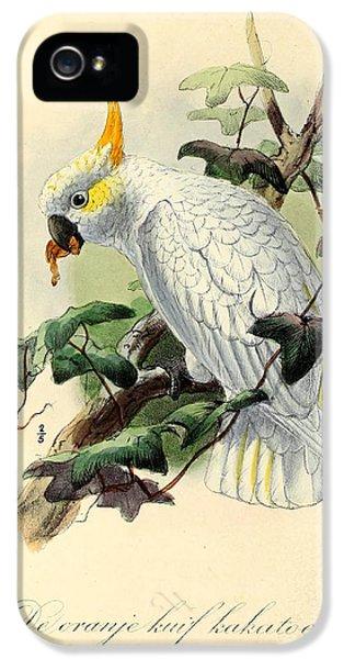 Cockatoo iPhone 5s Case - Orange Cockatoo by Dreyer Wildlife Print Collections
