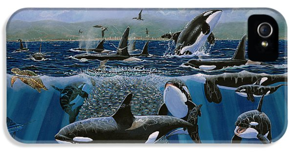 Orca Play Re009 IPhone 5s Case by Carey Chen