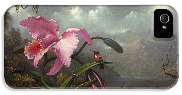 Humming Bird iPhone 5s Case - Orchid And Hummingbird by Martin Johnson Heade