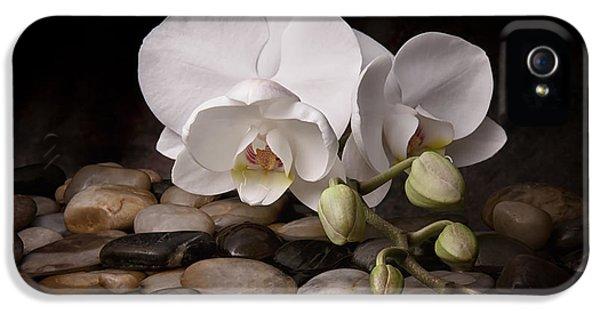 Floral iPhone 5s Case - Orchid - Sensuous Virtue by Tom Mc Nemar