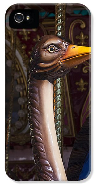 Ostrich iPhone 5s Case - Ostrich Carrousel Ride by Garry Gay