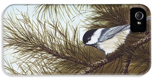 Out On A Limb IPhone 5s Case by Rick Bainbridge