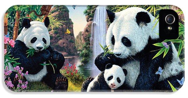 Panda Valley IPhone 5s Case