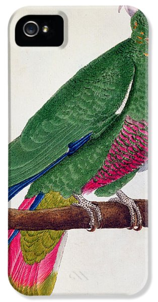 Parrot IPhone 5s Case by Francois Nicolas Martinet