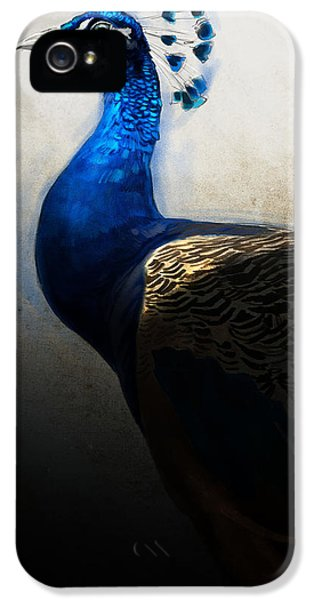 Peacock iPhone 5s Case - Peacock Portrait by Aaron Blaise