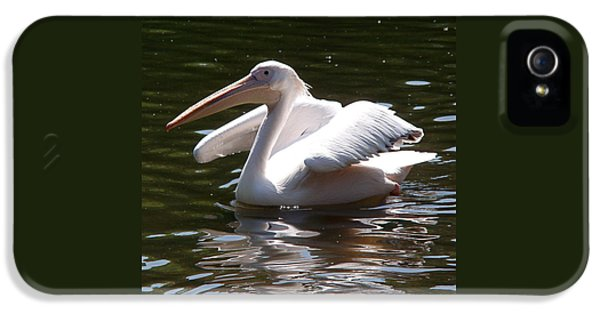 Pelican And Friend IPhone 5s Case