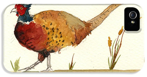 Pheasant iPhone 5s Case - Pheasant by Juan  Bosco