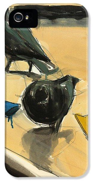 Pigeons IPhone 5s Case by Daniel Clarke