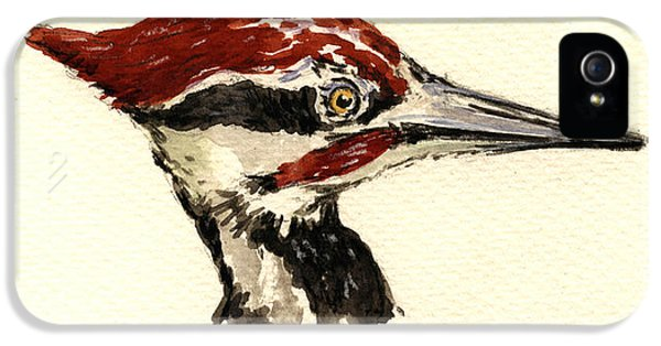 Woodpecker iPhone 5s Case - Pileated Woodpecker Head Study by Juan  Bosco