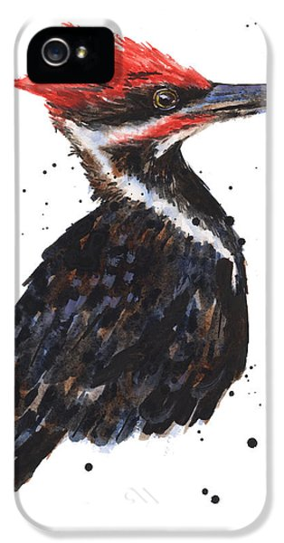 Pileated Woodpecker Watercolor IPhone 5s Case by Alison Fennell