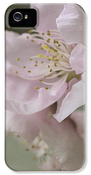 Pink Is The Color Of Happiness IPhone 5s Case by Linda Lees