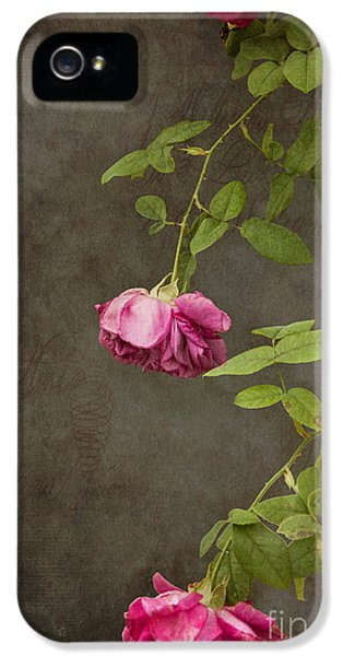 Garden iPhone 5s Case - Pink On Gray by K Hines