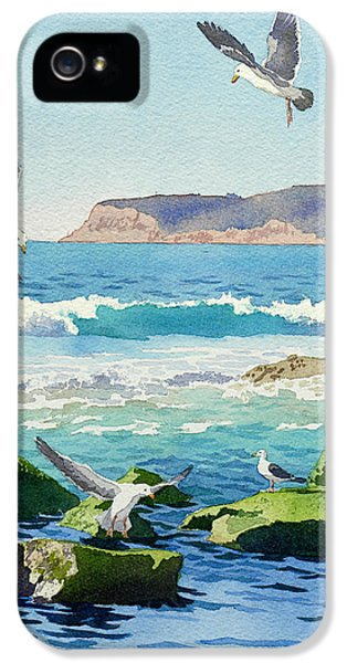 Seagull iPhone 5s Case - Point Loma Rocks Waves And Seagulls by Mary Helmreich