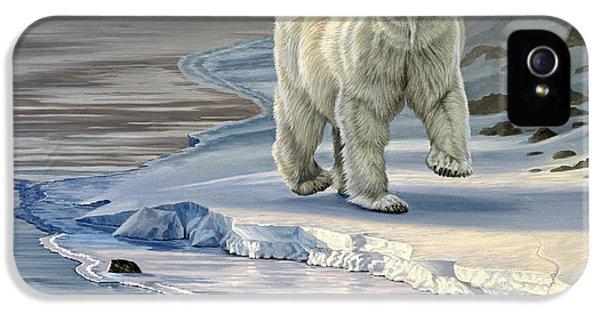 Polar Bear iPhone 5s Case - Polar Bear On Icy Shore    by Paul Krapf