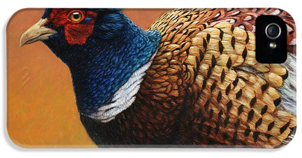 Pheasant iPhone 5s Case - Portrait Of A Pheasant by James W Johnson