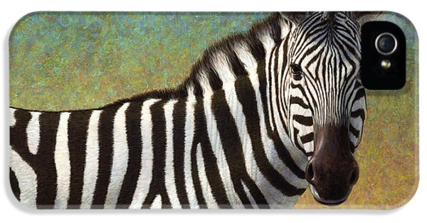 Portrait Of A Zebra IPhone 5s Case
