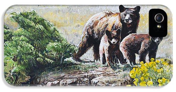 Prairie Black Bears IPhone 5s Case by Aaron Spong