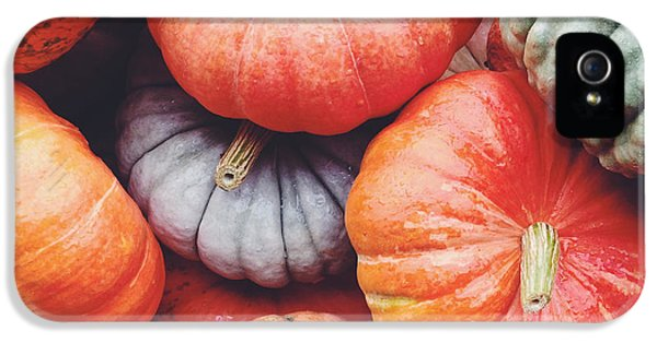 Pumpkins Galore IPhone 5s Case by Kim Fearheiley