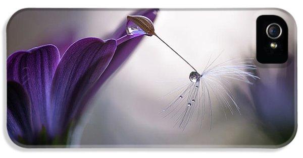 Macro iPhone 5s Case - Purple Rain by Silvia Spedicato