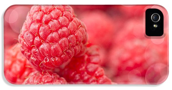 Raspberry iPhone 5s Case - Raspberry by Delphimages Photo Creations