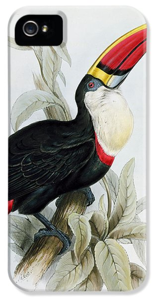 Red-billed Toucan IPhone 5s Case by Edward Lear