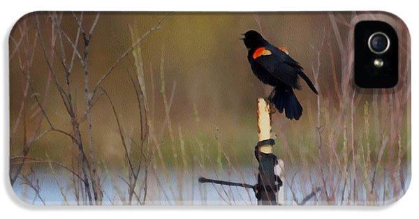 Red Winged Blackbird 2 IPhone 5s Case by Ernie Echols