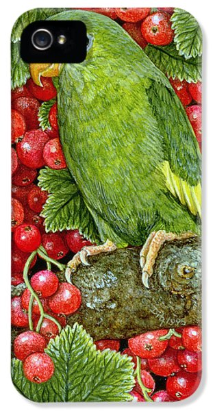 Redcurrant Parakeet IPhone 5s Case by Ditz