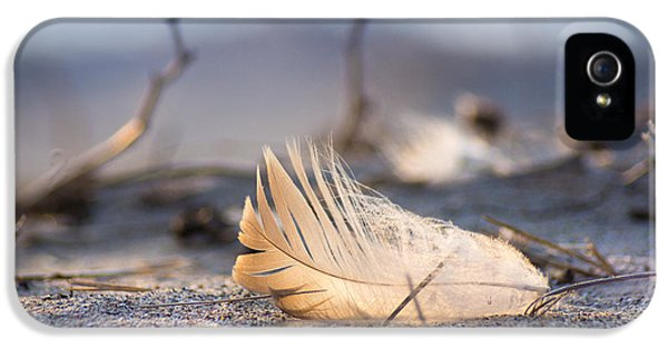 Remnants Of Icarus IPhone 5s Case