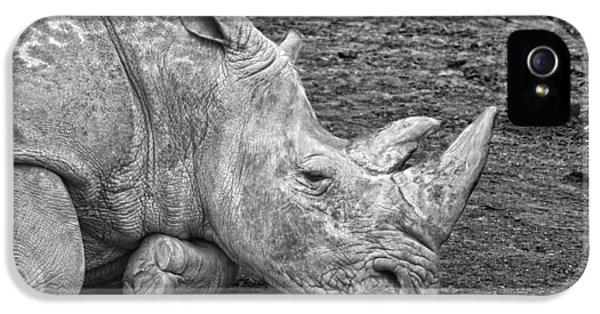 Rhinoceros IPhone 5s Case by Nancy Aurand-Humpf