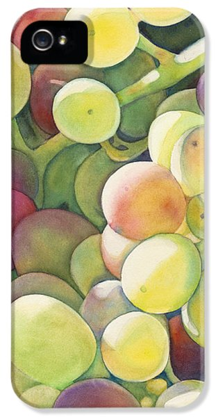 Ripening IPhone 5s Case by Sandy Haight