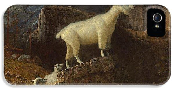 Rocky Mountain Goats IPhone 5s Case by Albert Bierstadt