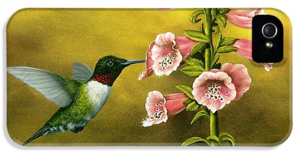 Ruby Throated Hummingbird And Foxglove IPhone 5s Case by Rick Bainbridge
