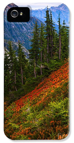 Sahale Arm IPhone 5s Case by Inge Johnsson